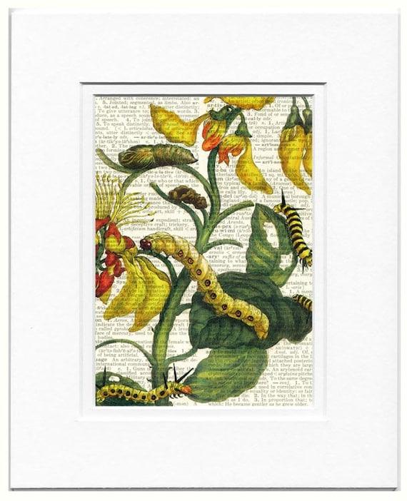 caterpillars and flowers II print