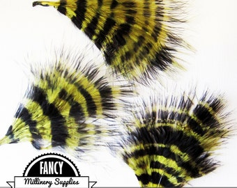 3 - Olive Green - Black - Stenciled - Stripped - Turkey Marabou Feathers - Steampunk