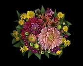 Bouquet of fall flowers magenta pinks dahlia echinecea 8 x 10 photograph, composed on a scanner - GardenCapture