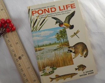 1967 Pond Life Guide - Plants and Animals in American Ponds and Lakes - Illustrated Pond Life Reference Plants, Ducks, Raccoons, Birds