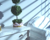 Miniature moss dollhouse topiary 1:12 scale