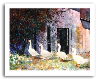 Goose/Geese Farm Barn Art Prints Signed and Numbered