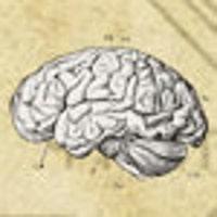 neuronsnotincluded