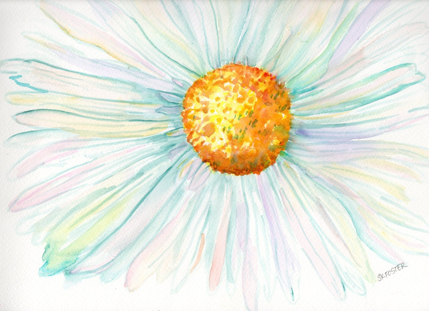 White Daisy Watercolors Paintings Original 11 X By
