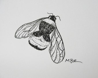 Bumblebee Original Art Ink Drawing Bumblebee Art Black and White Insect Drawing Nature Art Illustration 5 x 7