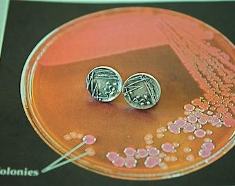Petri Dish Stud Earrings