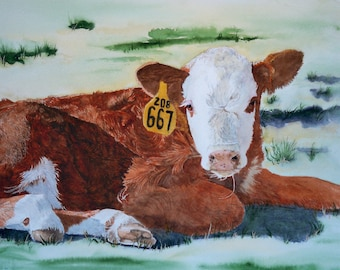 Hereford Calf reproduction