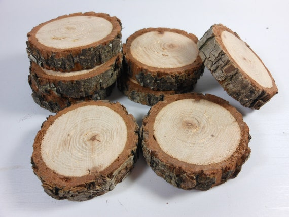 PECAN BRANCH SLICES - 8 Real Wood Log Sections - 1 3/4 -2 Inch Diameter- Naturally Beautiful Tree Slivers