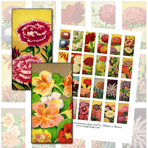 Antique French Seed Packet II art domino digital collage sheet 1x2 inch 25mm x 50mm rectangle blue pink yellow pretty flowers