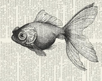 goldfish II dictionary page print