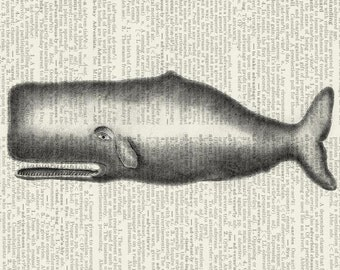 whale dictionary page print