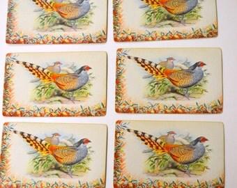 6 Pheasant Vintage Playing Cards