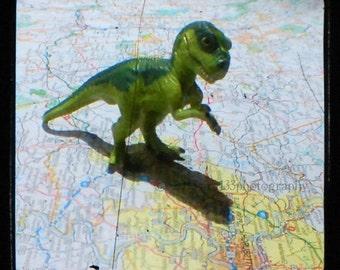 "CLEARANCE Dinosaur Art T-Rex Stomping On Pittsburgh Toy Cute Childrens Decor Fine - 5x5 inch T-Rex Dinosaur on a Map Photo - ""Herbert"""