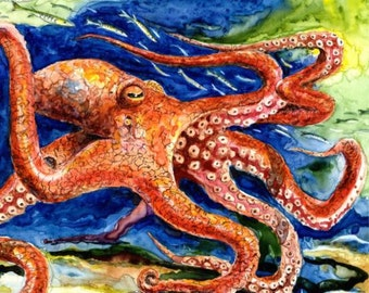 ORIGINAL Octopus Watercolor painting on 9X12 Yupo Paper Beach Decor barracuda swimming by Barry Singer