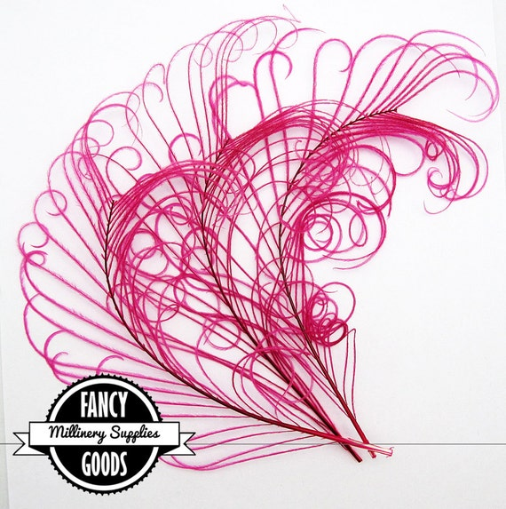 3 - Curled - Peacock Stems - Feathers - Hot Pink