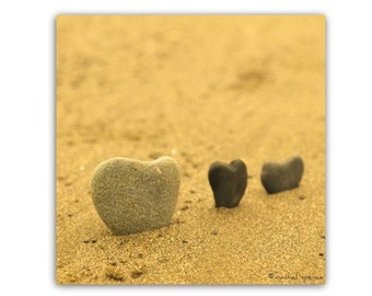 Heart Rocks in the Sand Stones Nature Beach Woodland Natural Autumn Trends Fall Trends October Forest Orange Hearts