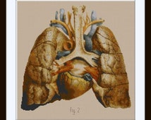 Anatomical Human Lungs and Heart Cross stitch pattern PDF / Anatomy pattern / Medical Illustration