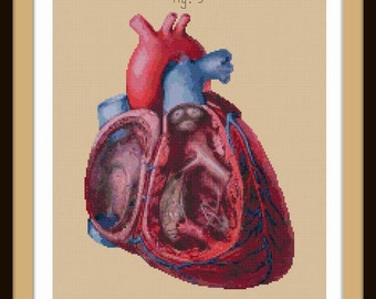 Antique Anatomical Heart Cut-Away cross stitch pattern PDF
