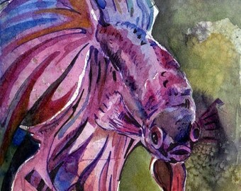 Reproduction of Painting of Purple Betta Fish - Print of Original Watercolor on Paper Art by Jen Tracy - Violet Fish Wall Decor - Fish Art