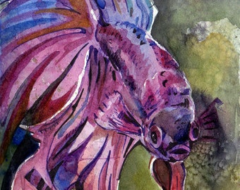 Painting of Purple Betta Fish - Original Watercolor on Paper Art by Jen Tracy - Violet Fish Painting