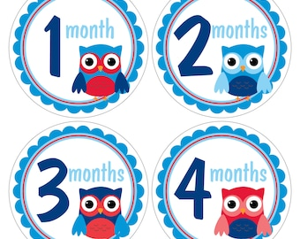 12 Monthly Baby Milestone Waterproof Glossy Stickers - Just Born - Newborn - Weekly stickers available - Design M031-06