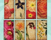 Digital Collage Sheet PRESSED FLOWERS 1x2in Domino Tile Botanical Illustrations - no. 0172