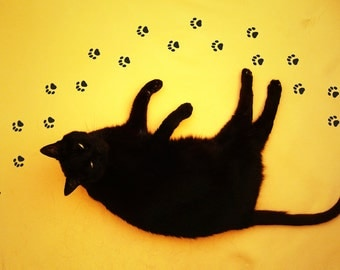 Cat Paw Stickers for Floor, Wall or Window