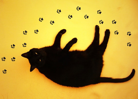 Cat Paw Stickers for Floor or Wall