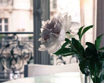 Paris Photography - Evening light in the Apartment - Paris Baby Pink Peony, emerald green, iron balcony, paris home decor