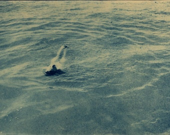 Floating Cyanotype 7 x 10 in 11 x 14 Matte
