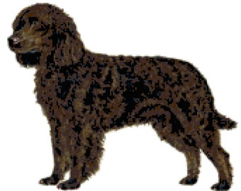 American Water Spaniel Dog Counted Cross Stitch Pattern