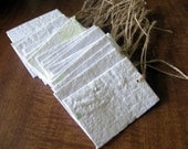 White Seed Paper Wedding Favor - Plantable Seed Paper Wedding Gift Tag - Placecard
