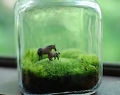 moss terrarium mother and child
