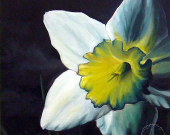 Finally Spring - Original Oil - 12x12 - Daffodil in light