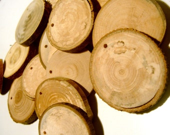 60   Blank Tree Branch Slices  2 to 3 inch Drilled