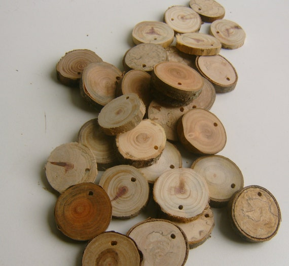 250 Top Drilled Small Tree Branch Slices Assorted Wholesale Lot