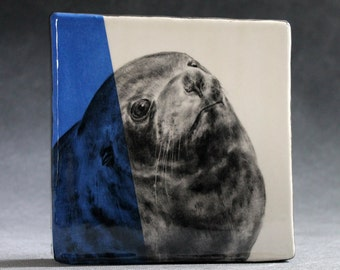 Hand Painted Fur Seal Portrait Wall Tile Blue