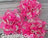 SALE!! HoT PiNK PAiSLeY FLoRaL- Set of 3 Gorgeous Shabby Chic Frayed Chiffon and Lace Rose Flowers- 3.5 inch