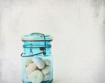Sound Of Summer - Blue Ball Bottle of seaurchins beach house wall decoration summer gift ocean breeze Fine Art Print 8x8