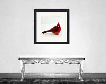 Cheese - Ruby red Winter decoration ruby Red and white Male Cardinal In Snow Fine Art Print 4x4 - 5x7