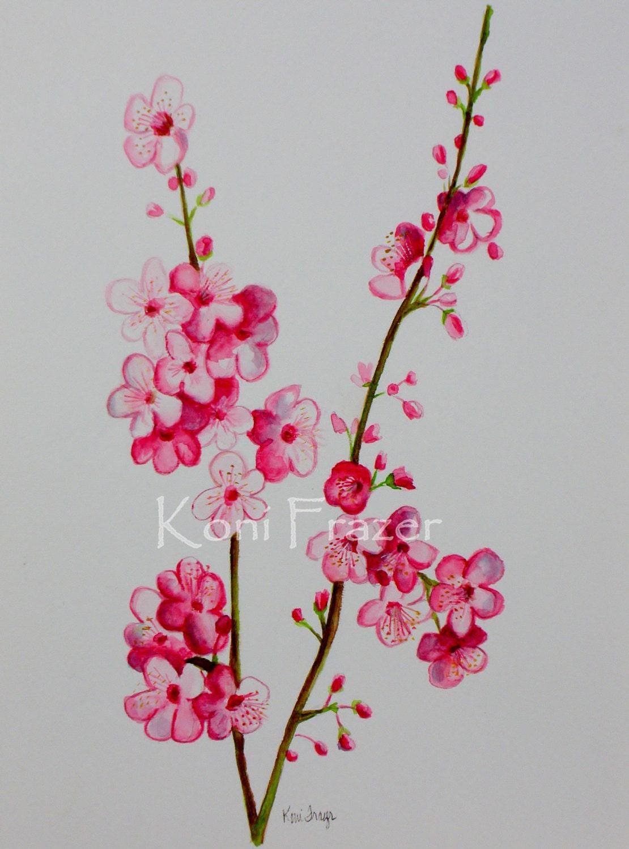 Cherry blossoms spring flowers original watercolor painting for Spring flowers watercolor