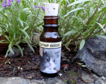 Catnip Seed Bottles