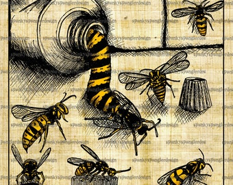 Wasp Digital Image Download - Digital Download for Iron on Transfer, Papercrafts, T-Shirts, Tote Bags, Cushions