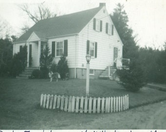 1952 Don Theo White House Home North Wilmington MA Collie Dog Vintage Photo Vintage Black and White Photograph