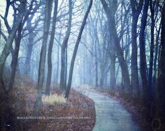 UNKNOWN PATH Original Color Art Landscape Textured Photograph