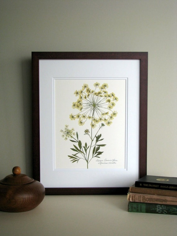 Pressed Wildflower Print 11x14 Double Matted By
