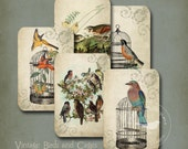 Birds and Bird Cages Vintage Tags Instant Digital Download