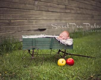 Newborn Baby Child Photography Prop Digital Backdrop for Photographers Apple Cart