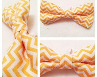 Puppy Dog Bow-Tie Golden Chevron