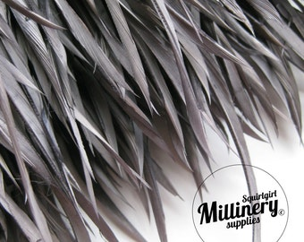 Grey Goose Biot Feather Fringe, 5 Inch Piece (30 or More Feathers) for Millinery and Craft